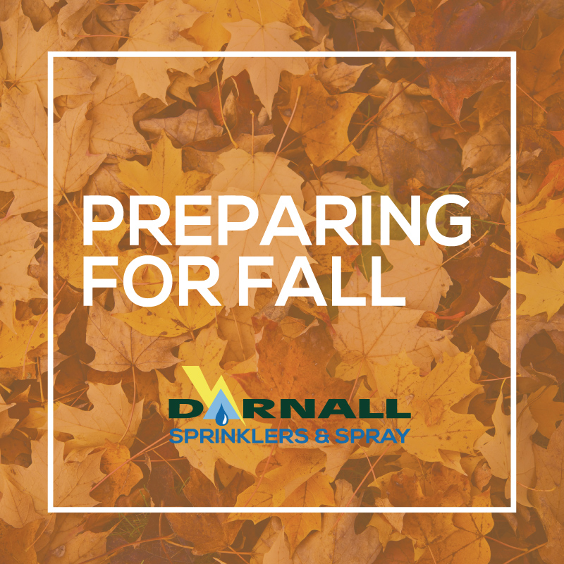 Prepare your lawn for fall